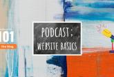PODCAST: website basics - marketing 101 - marketing consultant