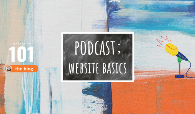 PODCAST: website basics - marketing 101 - marketing consultant