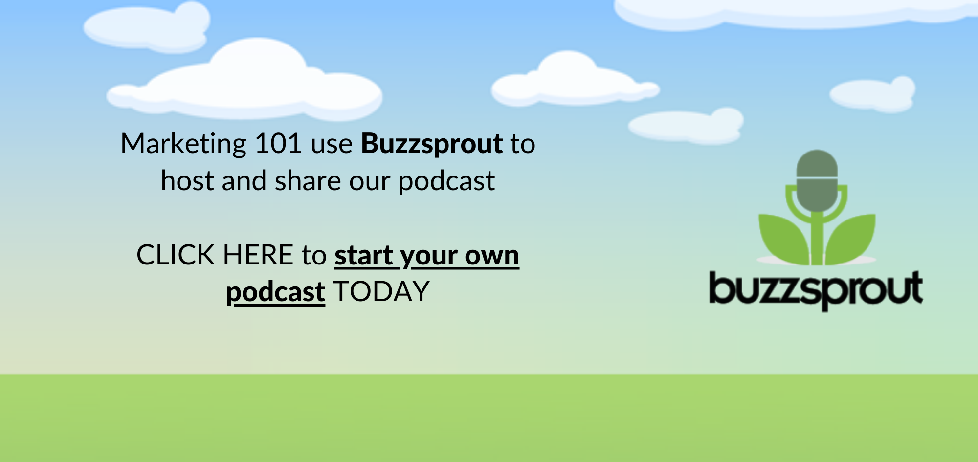 Marketing 101 podcast - buzzsprout banner - marketing consultant